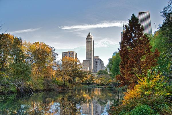 Central park New York สถานที่พักผ่อนสำหรับคนเมือง